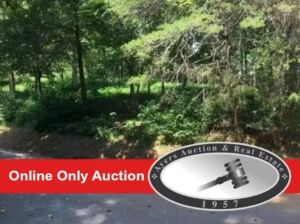 Absolute Online Auction - Bank owned 15 lots in 4 counties