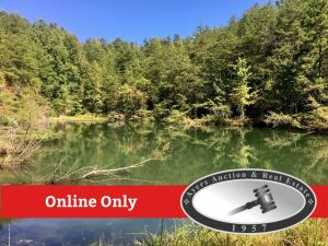 Online Only Auction, 94+ acres, Big Four Rd, LaFollette, TN