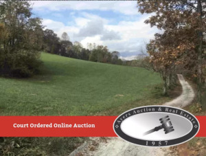 Chancery Court Ordered Online Auction, 21 Ac. Farm, Grantsboro, TN