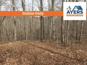 Online Only - 50.92 Acres Bethel Lane, LaFollette