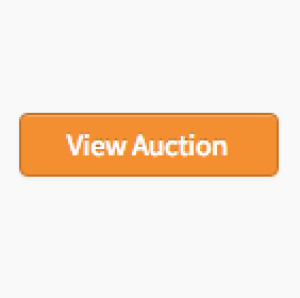 Household Online Only Auction