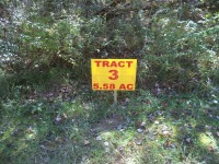 Tract 3 - 5.58 AC
