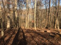 1.23 ac. lot on N. Shorewood Ln. in the Cove Norris, Sect. 2A subdivision - 2